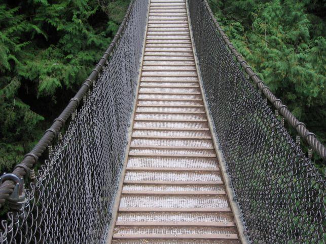suspensionbridge1.jpg